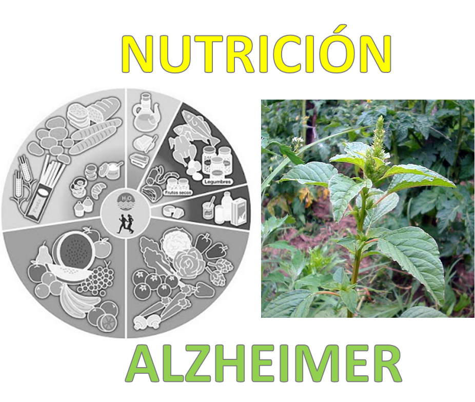 NUTRICIÓN-ALZHEIMER