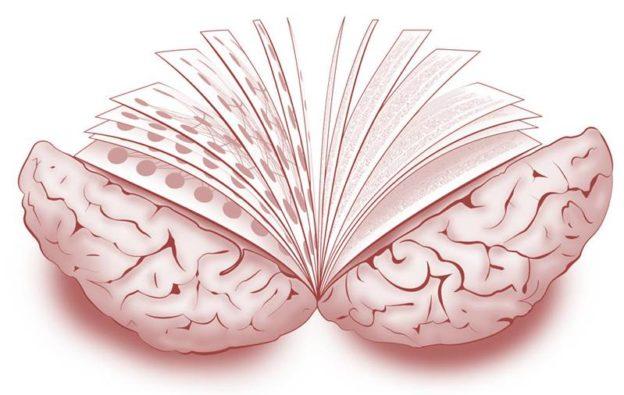 leer-cerebro-alzheimer