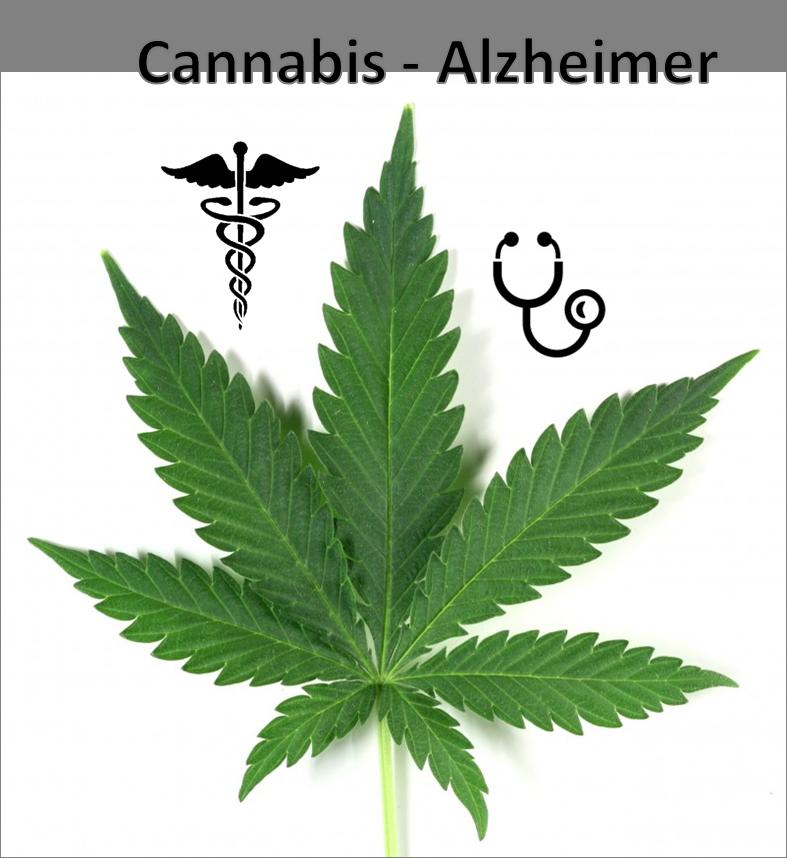 terapia-cannabis-alzheimer