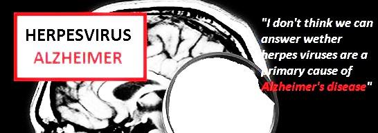 herpes-virus-alzheimer