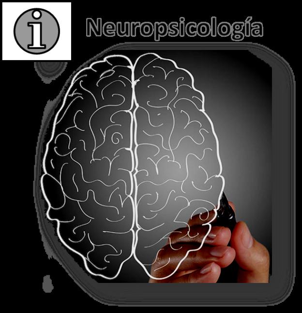 neuropsicología-alzheimer
