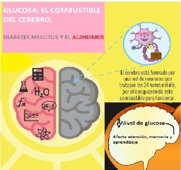 diabetes de resistencia a la insulina cerebral